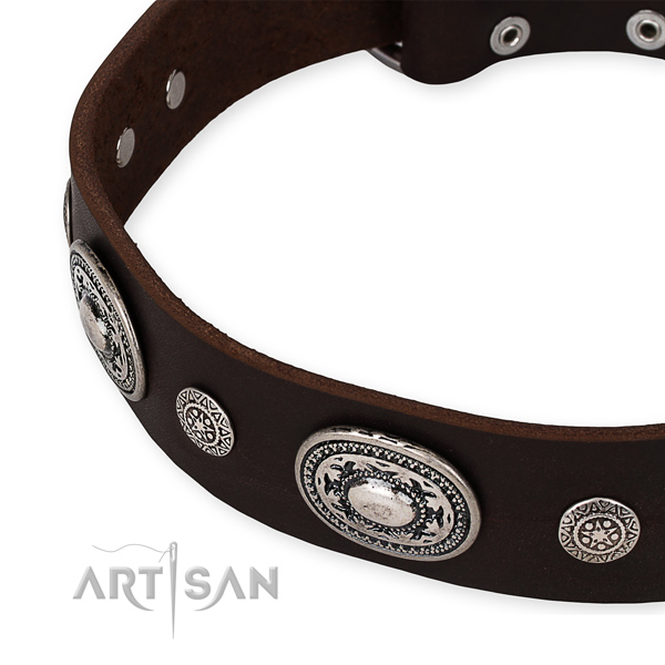 Strong genuine leather dog collar handcrafted for your handsome canine