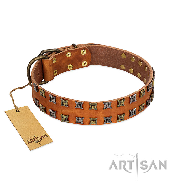 Best quality full grain leather dog collar with adornments for your pet