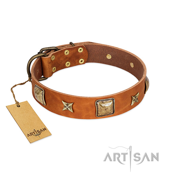 Unusual full grain leather collar for your dog