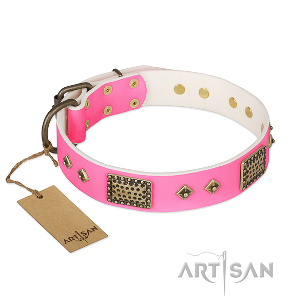 Easy to adjust full grain leather dog collar for daily walking your canine