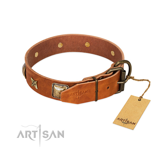 Leather dog collar with rust resistant buckle and embellishments