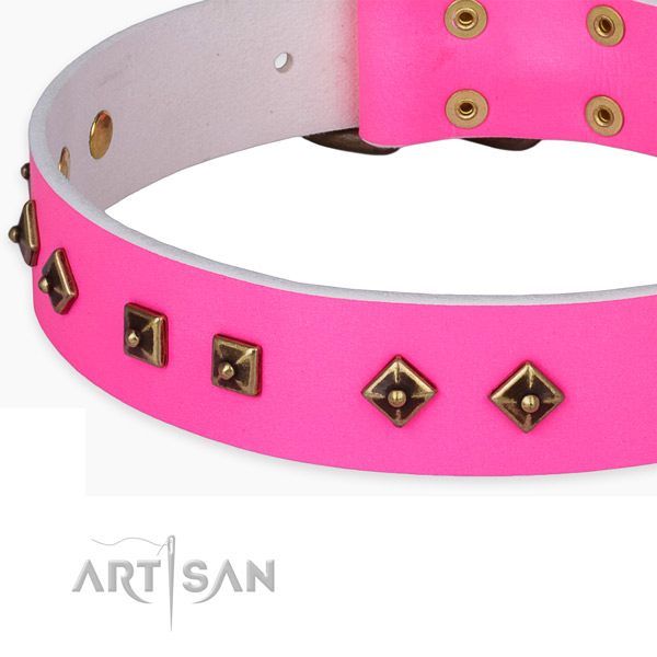 Exquisite leather collar for your impressive canine