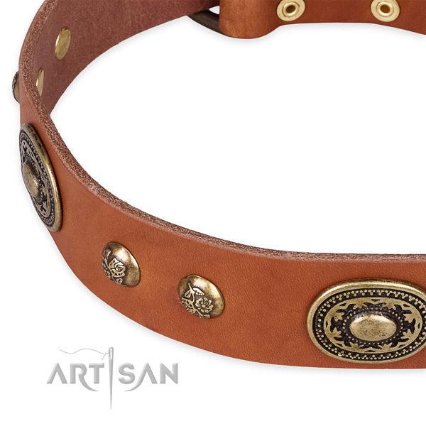 Exquisite genuine leather collar for your beautiful four-legged friend