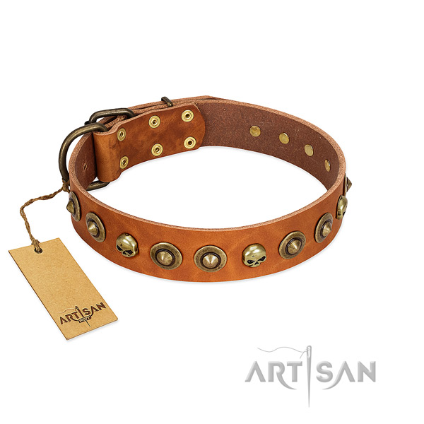 Leather collar with impressive embellishments for your canine
