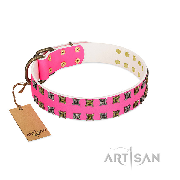 Genuine leather collar with stunning studs for your pet