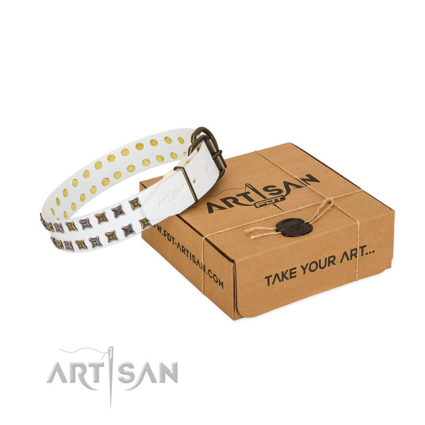 Full grain natural leather collar with stylish design adornments for your canine