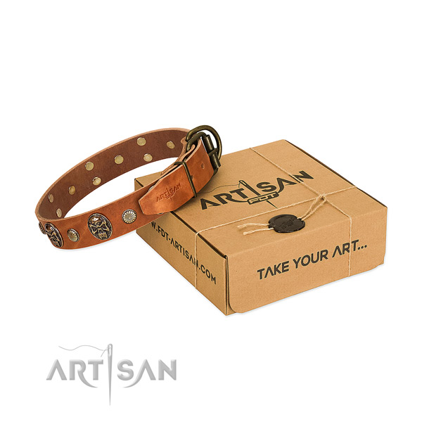 Rust-proof traditional buckle on genuine leather dog collar for everyday use