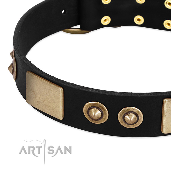 Rust resistant D-ring on leather dog collar for your pet