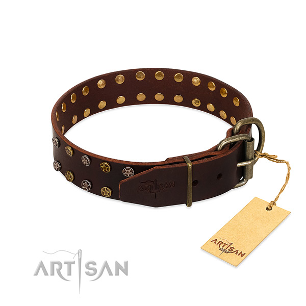 Easy wearing leather dog collar with amazing adornments