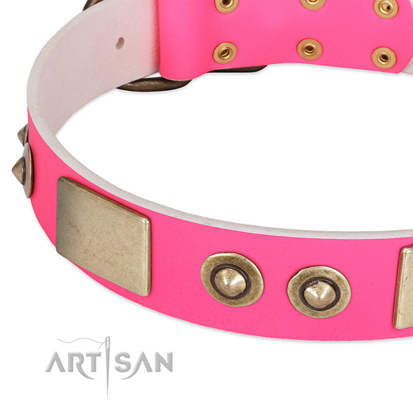 Durable adornments on genuine leather dog collar for your dog