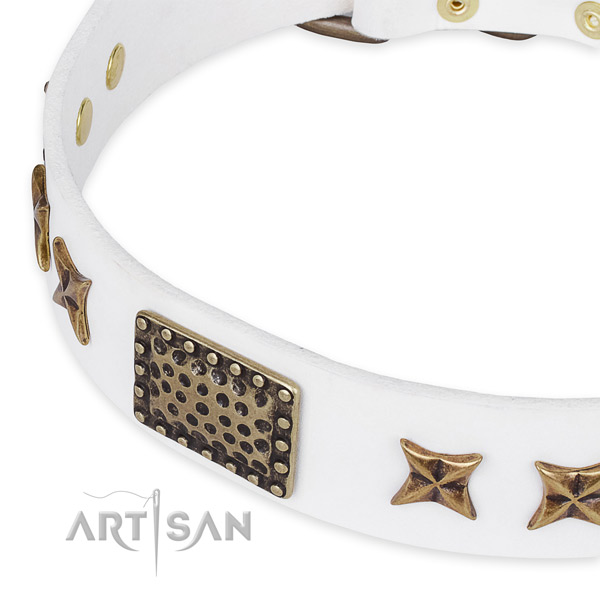 Genuine leather collar with durable hardware for your impressive doggie