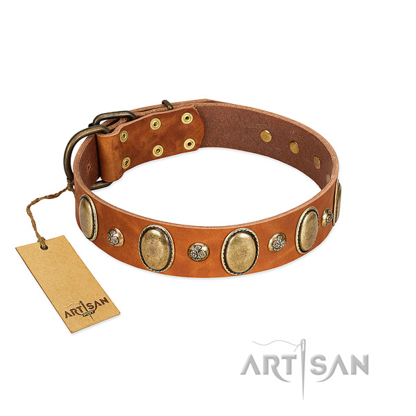 Full grain natural leather dog collar of gentle to touch material with significant studs