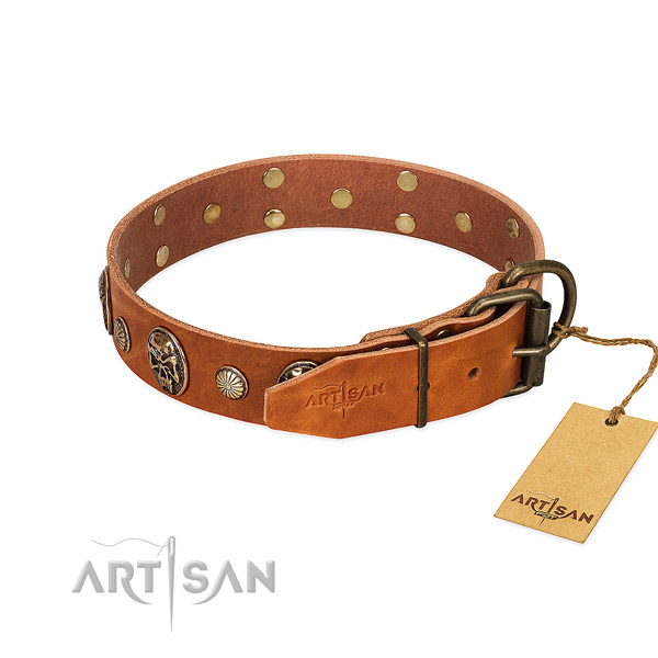 Rust resistant fittings on full grain genuine leather collar for daily walking your four-legged friend