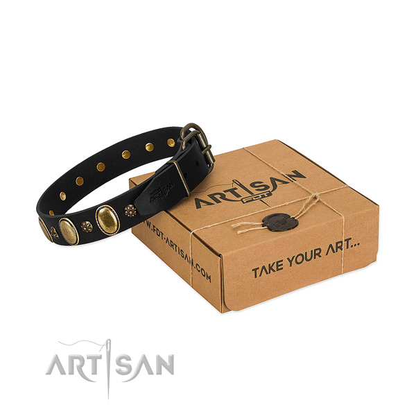 Walking soft to touch full grain leather dog collar with studs