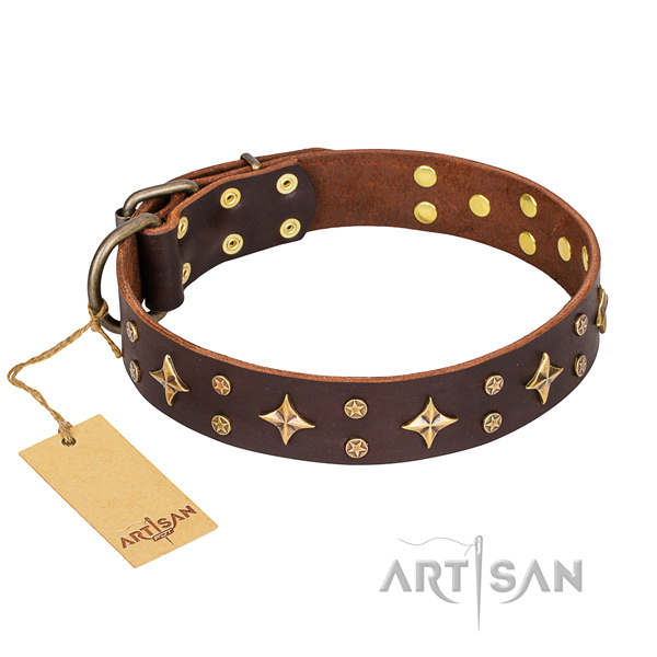 Handy use dog collar of quality full grain natural leather with embellishments