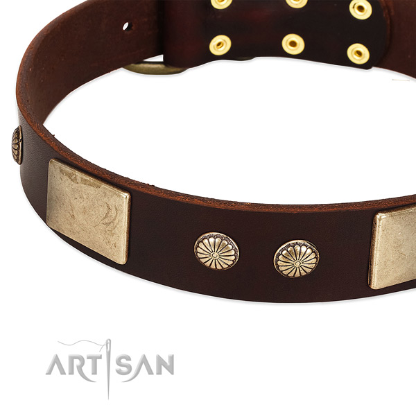 Corrosion proof buckle on genuine leather dog collar for your doggie