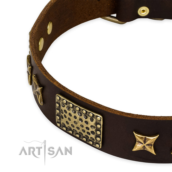 Full grain natural leather collar with corrosion proof hardware for your handsome canine