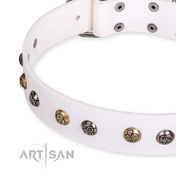 Natural leather dog collar with designer reliable embellishments