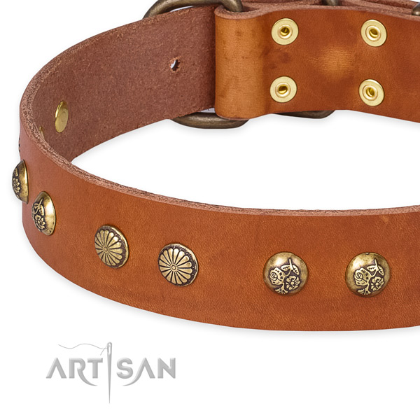 Full grain genuine leather collar with durable buckle for your handsome pet