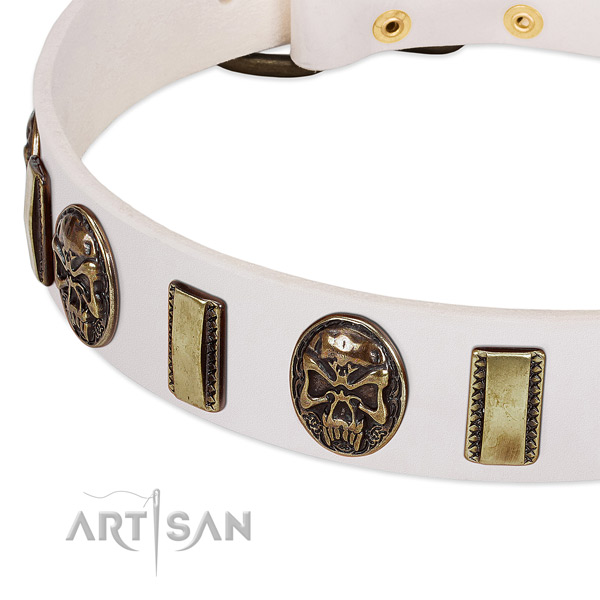 Reliable studs on natural genuine leather dog collar for your doggie