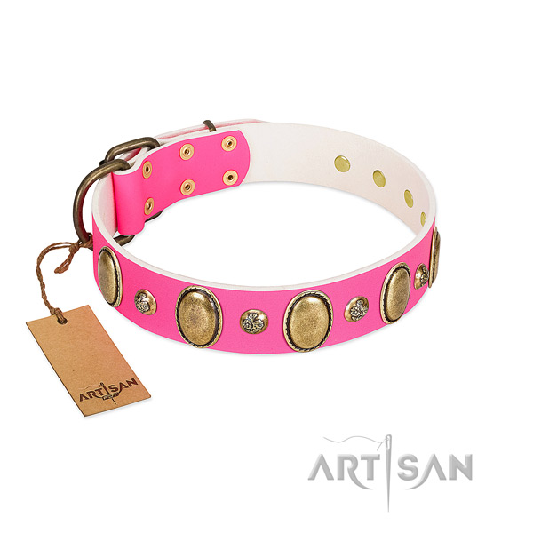 Walking best quality full grain leather dog collar with decorations
