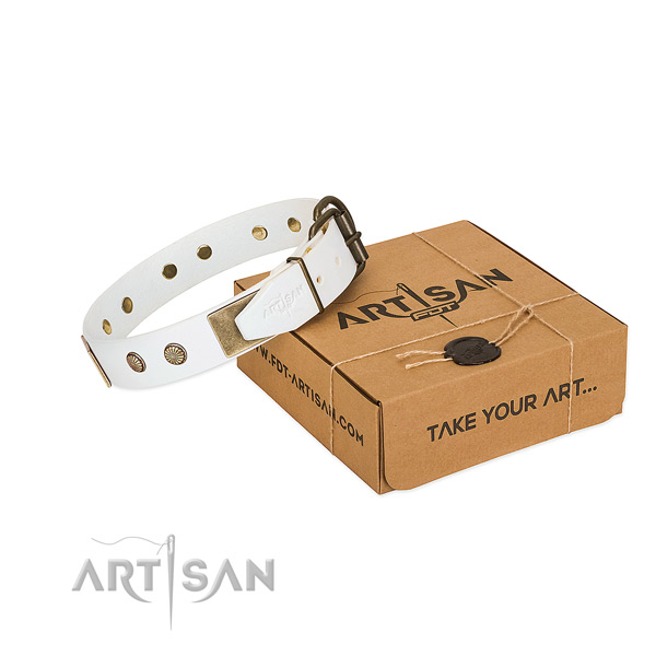 Durable buckle on dog collar for everyday use