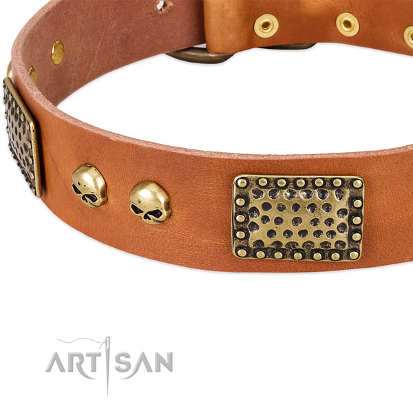 Strong buckle on full grain natural leather dog collar for your doggie