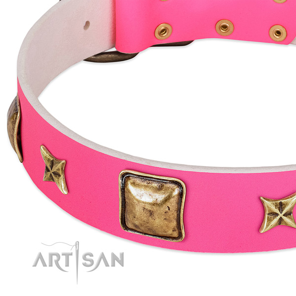 Full grain natural leather dog collar with significant studs