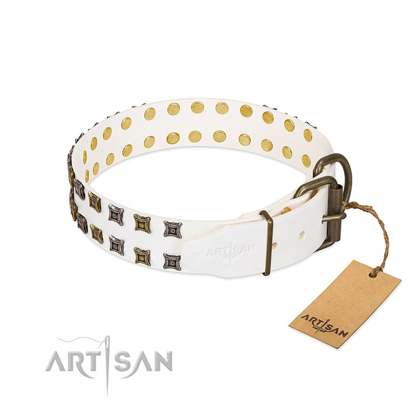 Full grain genuine leather collar with unique embellishments for your dog