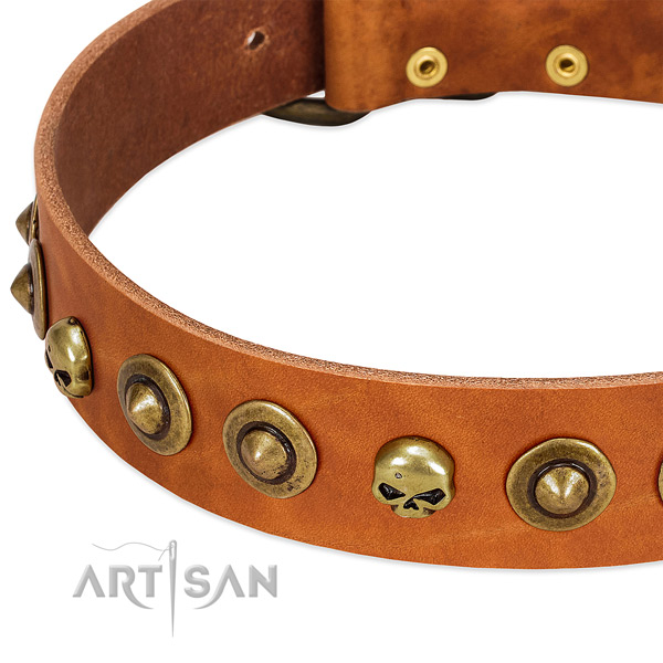 Exceptional decorations on genuine leather collar for your dog