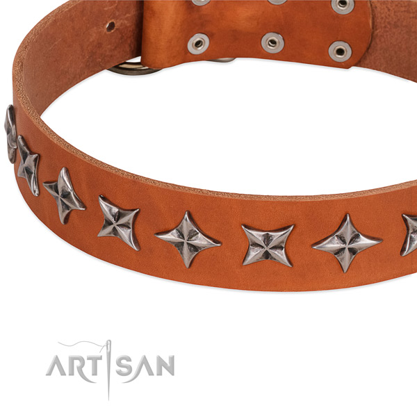 Easy wearing studded dog collar of finest quality leather