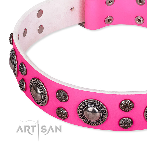 Stylish walking embellished dog collar of top notch genuine leather