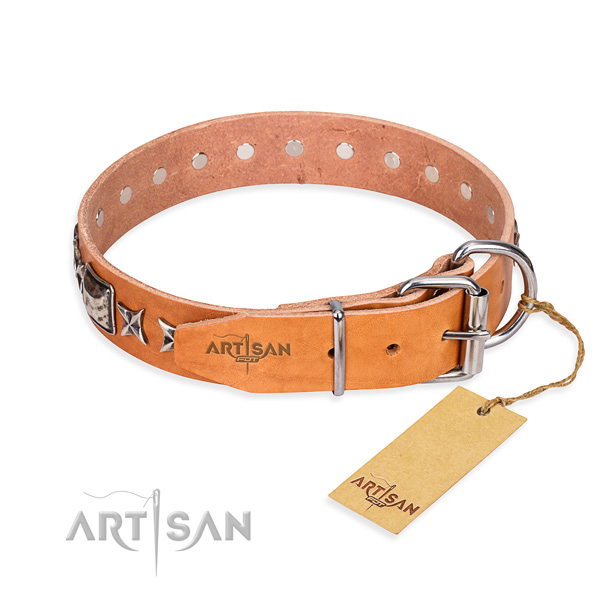Top quality adorned dog collar of leather
