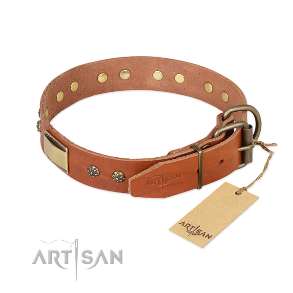 Full grain leather dog collar with corrosion proof hardware and studs