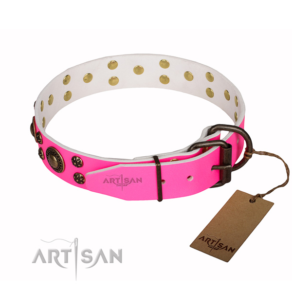 Walking adorned dog collar of reliable full grain genuine leather