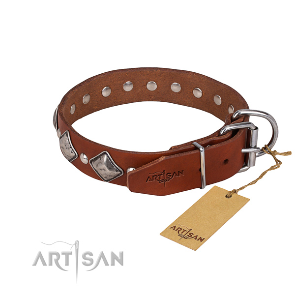 Comfy wearing decorated dog collar of top notch full grain genuine leather