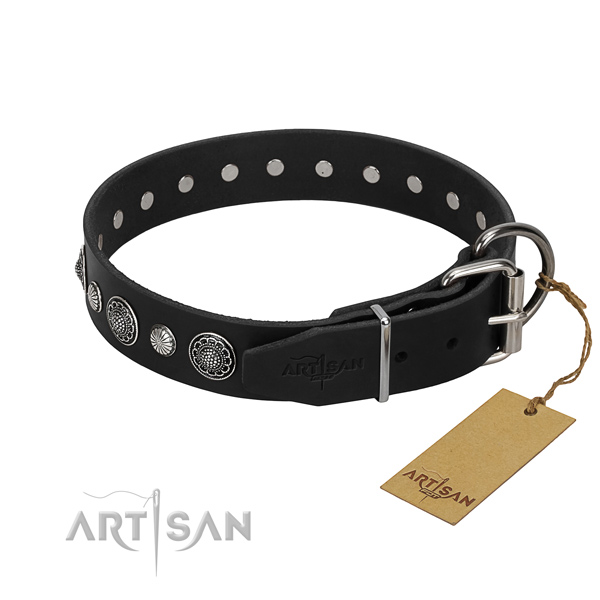 Strong full grain leather dog collar with trendy decorations