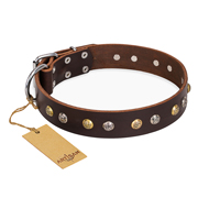 """Rare Flower"" FDT Artisan Brown Leather Riesenschnauzer Collar Adorned with Old-look Hemisphere Studs"