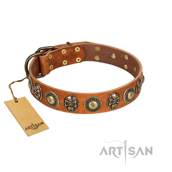Adjustable genuine leather dog collar for stylish walking your pet