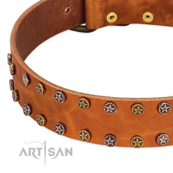 Handy use full grain leather dog collar with designer studs