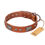 """Sparkling Skull"" FDT Artisan Tan Leather Riesenschnauzer Collar with Old Silver Look Plates and Skulls"