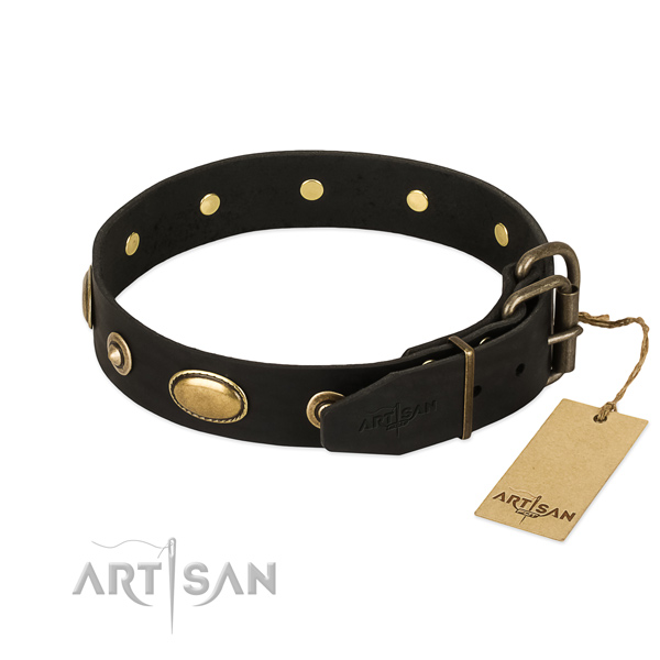 Rust-proof studs on natural leather dog collar for your canine
