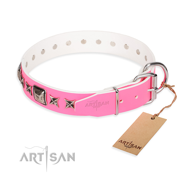 Best quality embellished dog collar of full grain leather