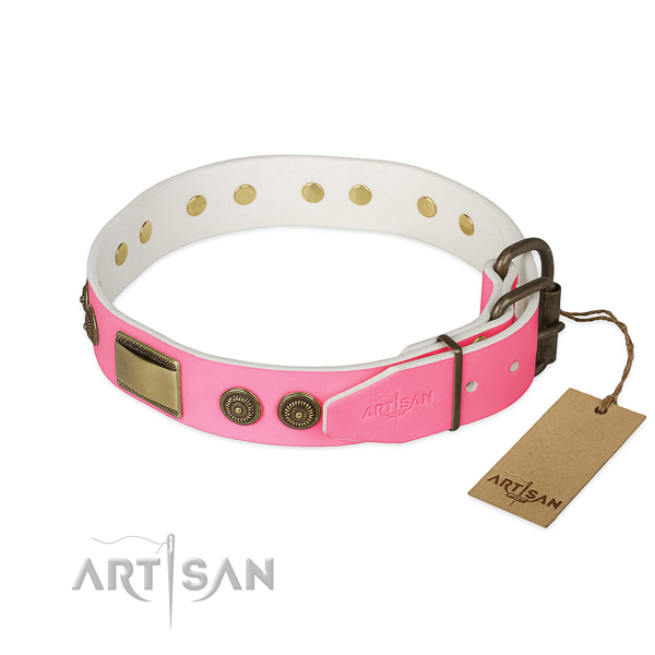 Durable D-ring on basic training dog collar
