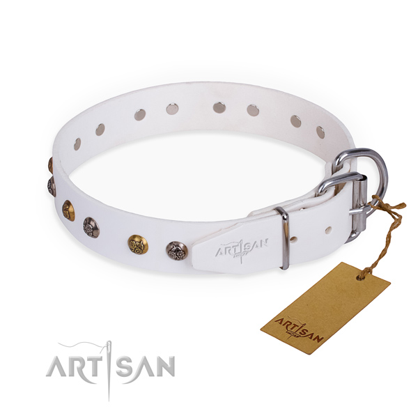 Leather dog collar with top notch reliable embellishments