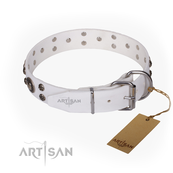 Everyday walking embellished dog collar of top notch full grain natural leather