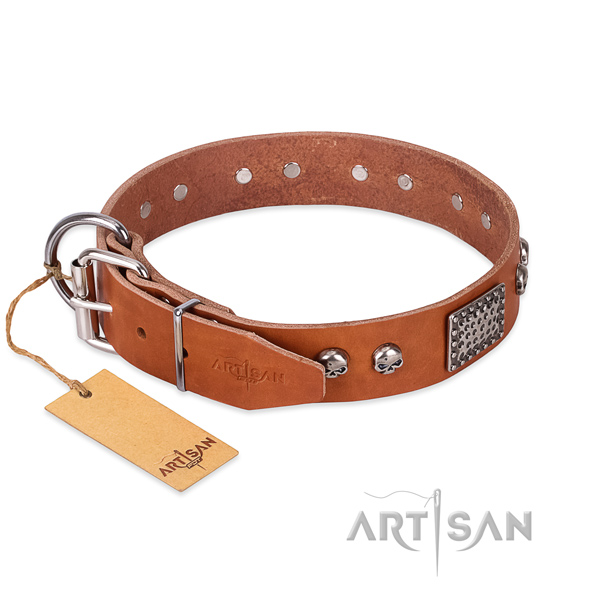 Strong adornments on daily walking dog collar