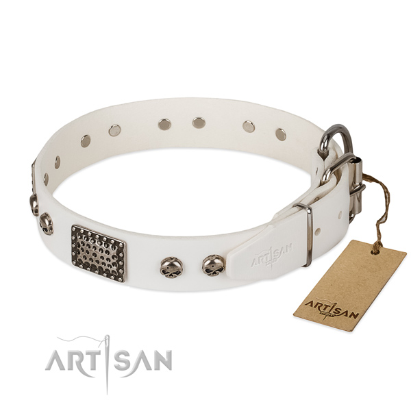 Strong fittings on everyday use dog collar