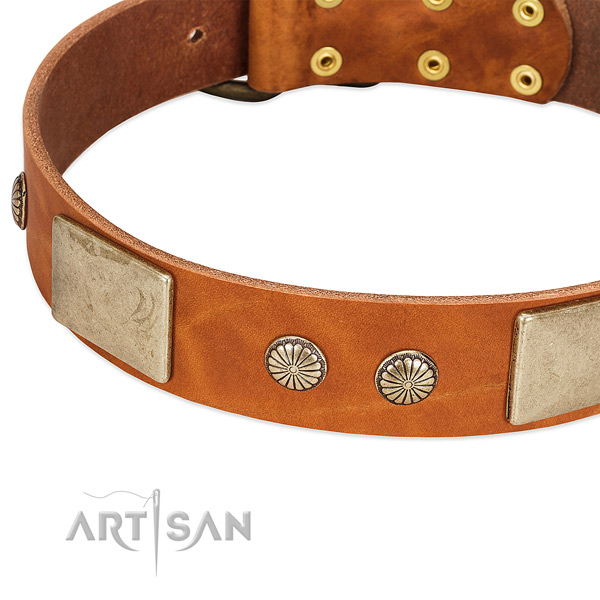 Durable studs on full grain genuine leather dog collar for your four-legged friend