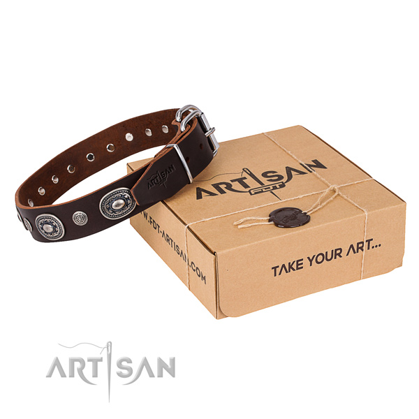 Durable genuine leather dog collar handcrafted for everyday walking